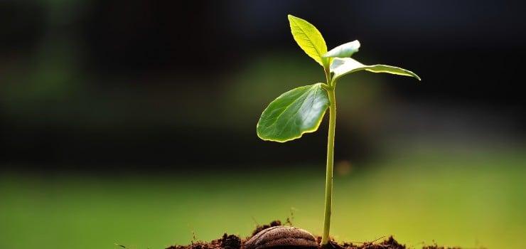 Next Generation Leadership - How To Enhance Performance - Martin Roll